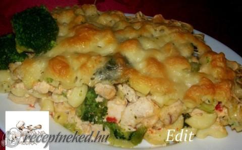 Rakott tészta csirkével és brokkolival