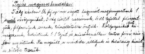 Tojás magyaros bundában